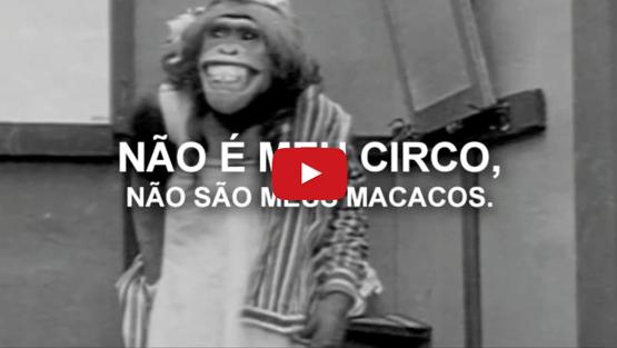 Não é o meu circo, não são meus macacos!